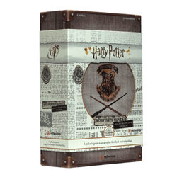 Harry Potter Roxforti csata - Sötét varázslatok kivédése