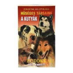Hűséges társaink a kutyák kártyajáték